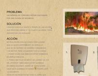 Acción de re forestación de las Sierras Cordobesas