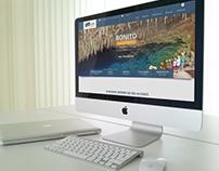 Site da Agência de turismo Opção Viagens