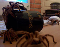 Arachnophobia (2006)