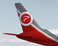 Diseño de aviones de empresas que componen la alianza