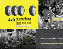 Re-branding Ruta 8 Neumáticos