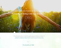 2016/Npu. Sitio Web. Parallax. Responsive.