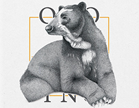 Santander Fauna Silvestre / Catálogo Ilustrado