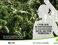 TRANSPARENCIA FORESTAL FASE 2