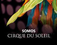Cirque du Soleil / Minisite
