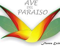 Diseño Web Ave del Paraiso