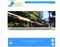 Diseño web www.ageci.org