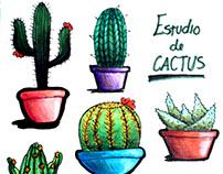 Cactus work