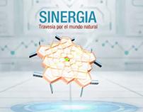SINERGIA Travesía por el mundo natural