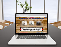 Diseño Web - Levi's Strauss