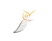 """Propuesta de Logotipo """"Amazing Patagonia"""" Puerto Varas"""