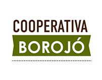 Borojó