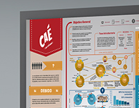infographic of design of information for CAÉ