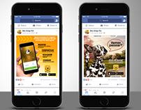Design / Social Media / Lançamento APP / Meu Amigo Pet
