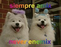 Proyecto Viral: Perritos con Frases Inspiradoras