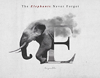 The Elephants Never Forget