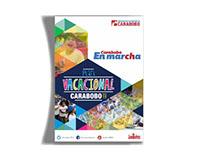Poster Plan Vacacional Gobierno de Carabobo