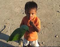 Amazonas Silvestre