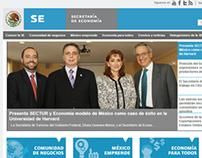 Sitio web SE
