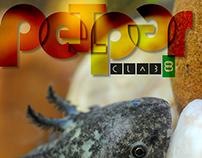 Peiper clab 8