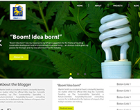 Web  - Idea Born