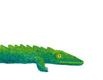 Animalillos. Ilustraciones para libro infantil