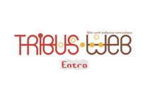 Web Siite ::: Tribus Web :::
