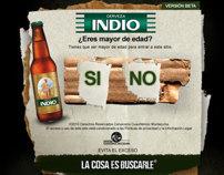 Rediseño Web INDIO.COM.MX