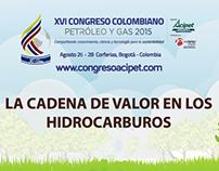 Infografías y piezas de redes sociales Congreso Acipet