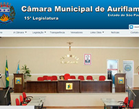 Portal Câmara Auriflama