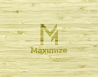 Maximize - Brand Identity