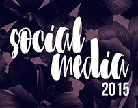 Social Media - 2015
