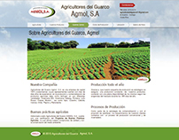 Diseño Web  --rarley35.wixsite.com/agricultores