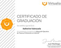 Certificado de ¨Nuevas profesiones en Internet¨