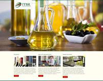 Site ITBR Importadora | Wordpress