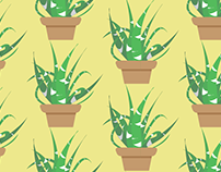 Cactus n' Succulents Patterns