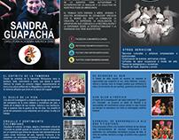 Portafolio - Compañía América Danza