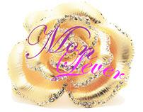 Monlever Indumentaria [Diseño de Sitio Web]