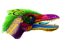 Mexican Raptor