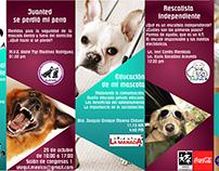 Dia del Bienestar Animal TEC de Monterrey Campus Qro.