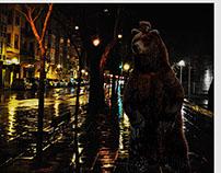 A bear in a rainy night