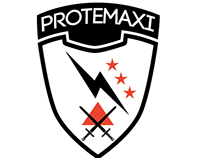Protemaxi: Web Wordpress