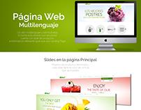 Página Multilenguaje