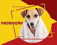 Conteúdo Redes Sociais | Primor Pet