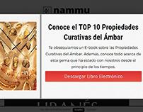 Pop-up / Wordpress