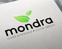 Mondra Logo Design