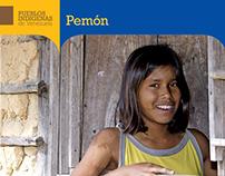Colección de libros - Pueblos Indígenas de Venezuela
