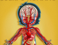 Educational apps for iPhone and IPad (The Human Body)