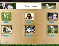 Sitio web de animales