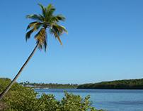 FOTOGRAFIA – BAHIA – LANDSCAPE